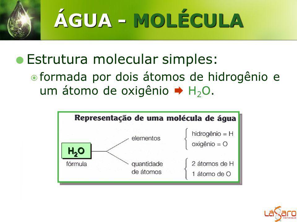 ÁGUA - MOLÉCULA Estrutura molecular simples: formada por dois átomos de hidrogênio e um átomo de oxigênio H 2 O.