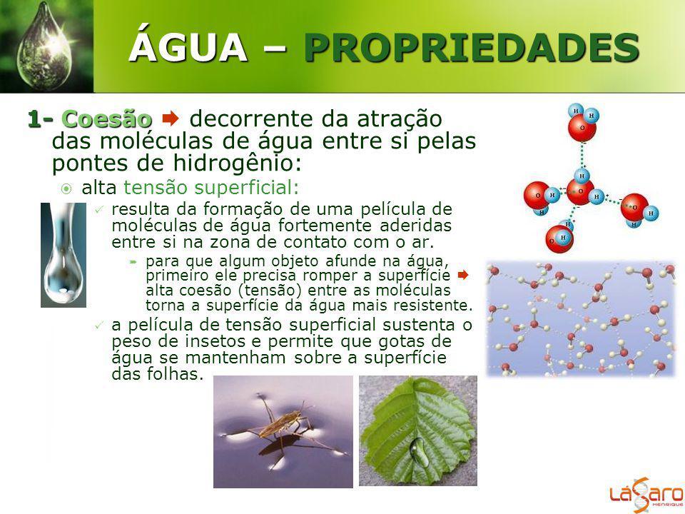 ÁGUA – PROPRIEDADES 1-Coesão 1- Coesão decorrente da atração das moléculas de água entre si pelas pontes de hidrogênio: alta tensão superficial: resul