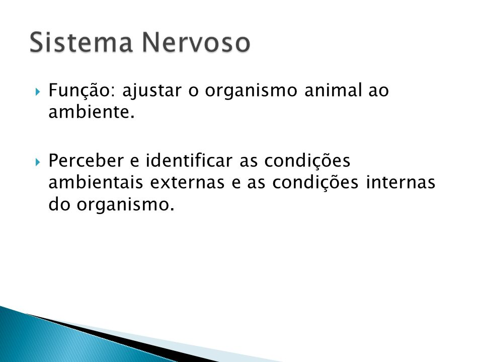 Função: ajustar o organismo animal ao ambiente. Perceber e identificar as condições ambientais externas e as condições internas do organismo.