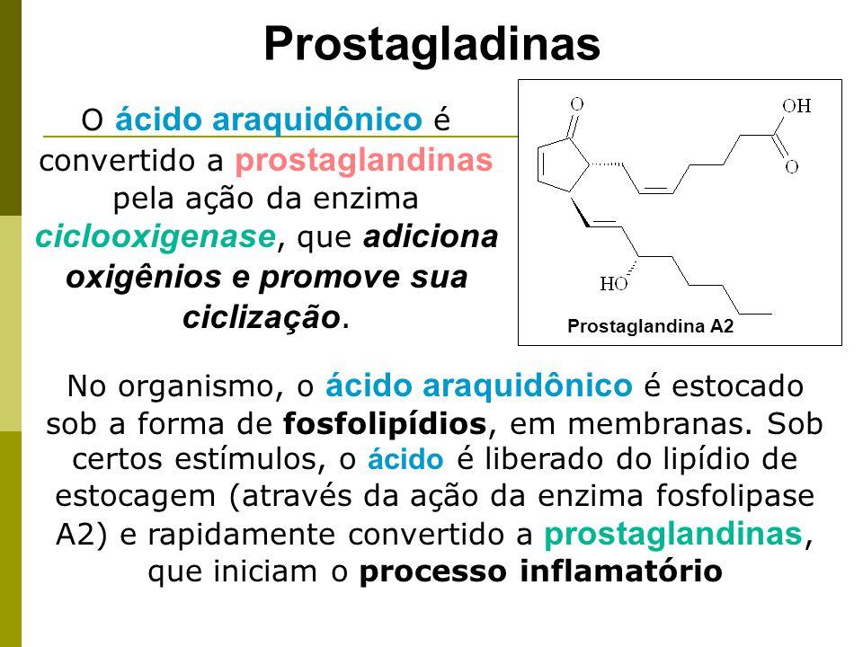 Prostagladinas A cortisona tem ação anti-inflamatória por bloquear a ação da fosfolipase A2.