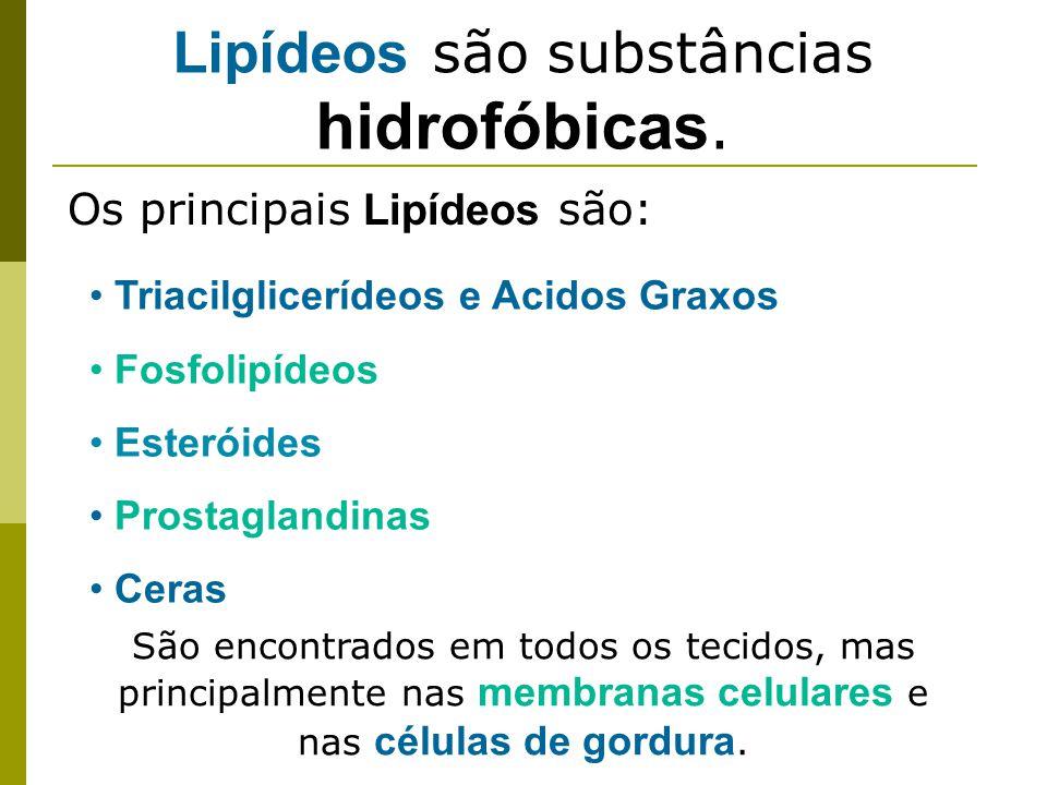Lipídeos são substâncias hidrofóbicas.