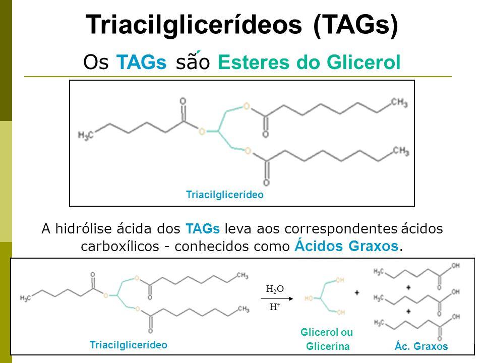 Triacilglicerídeos (TAGs) A hidrólise ácida dos TAGs leva aos correspondentes ácidos carboxílicos - conhecidos como Ácidos Graxos.