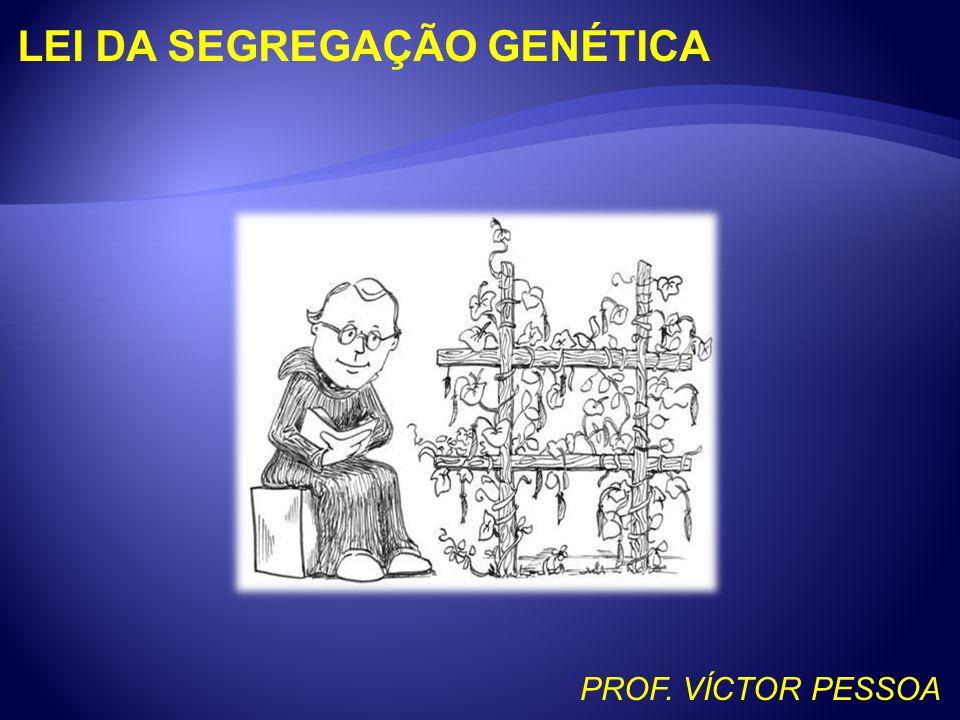 LEI DA SEGREGAÇÃO GENÉTICA PROF. VÍCTOR PESSOA