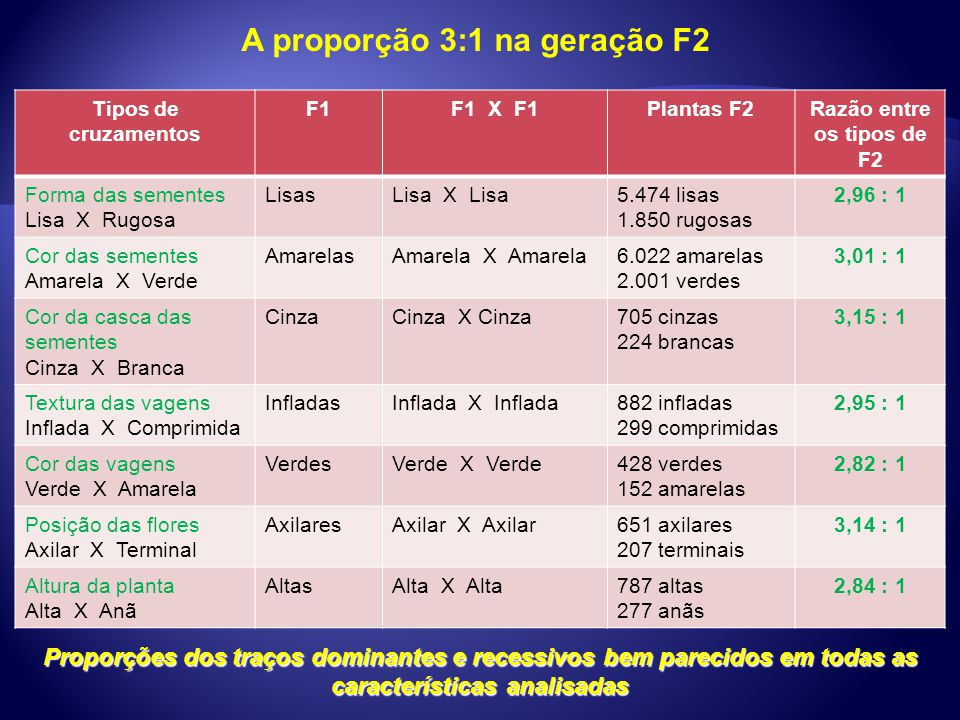 A proporção 3:1 na geração F2 Tipos de cruzamentos F1F1 X F1Plantas F2Razão entre os tipos de F2 Forma das sementes Lisa X Rugosa LisasLisa X Lisa5.47