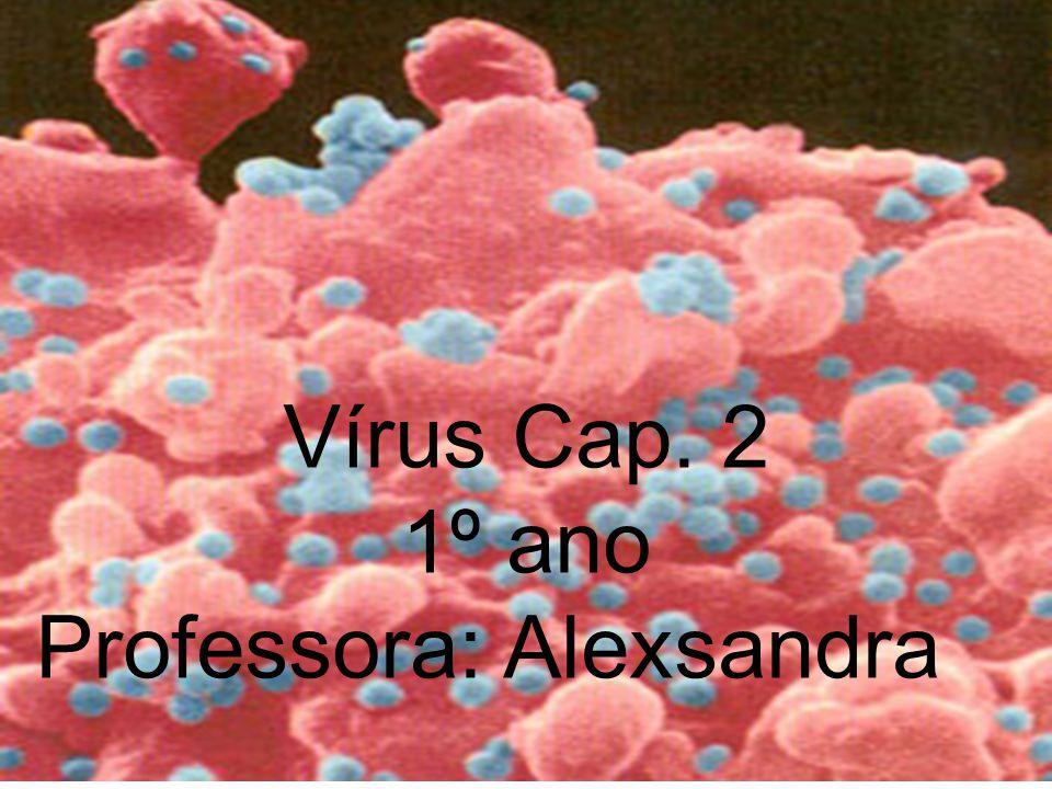 O que são vírus.Vírus são as menores entidades biológicas conhecidas.