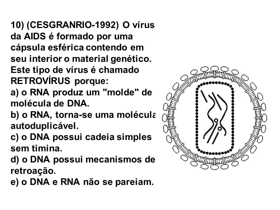10) (CESGRANRIO-1992) O vírus da AIDS é formado por uma cápsula esférica contendo em seu interior o material genético. Este tipo de vírus é chamado RE