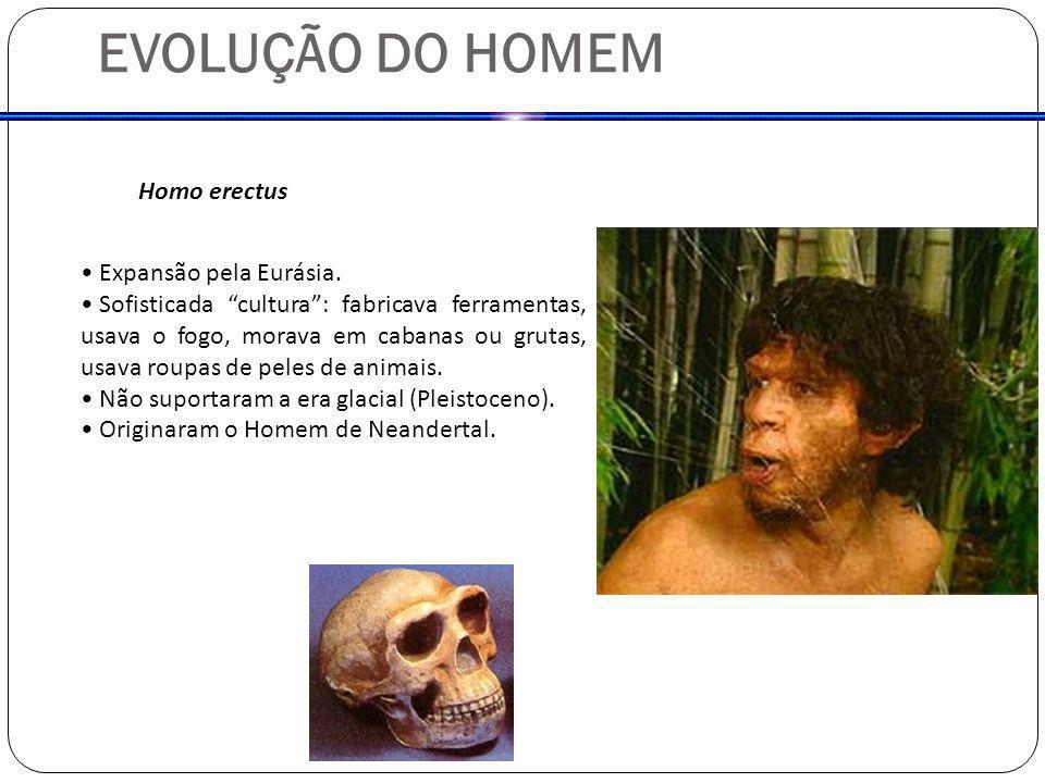 EVOLUÇÃO DO HOMEM Homo erectus Expansão pela Eurásia. Sofisticada cultura: fabricava ferramentas, usava o fogo, morava em cabanas ou grutas, usava rou