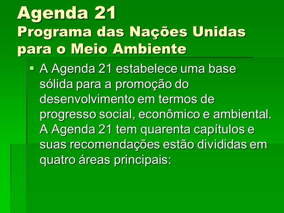 Agenda 21 Programa das Nações Unidas para o Meio Ambiente A Agenda 21 estabelece uma base sólida para a promoção do desenvolvimento em termos de progresso social, econômico e ambiental.