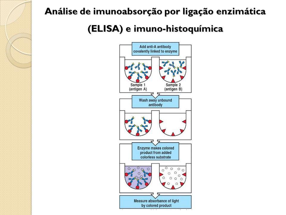 Análise de imunoabsorção por ligação enzimática (ELISA) e imuno-histoquímica
