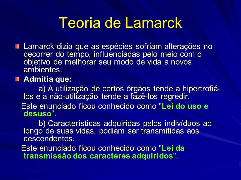 Teoria de Lamarck Lamarck dizia que as espécies sofriam alterações no decorrer do tempo, influenciadas pelo meio com o objetivo de melhorar seu modo d