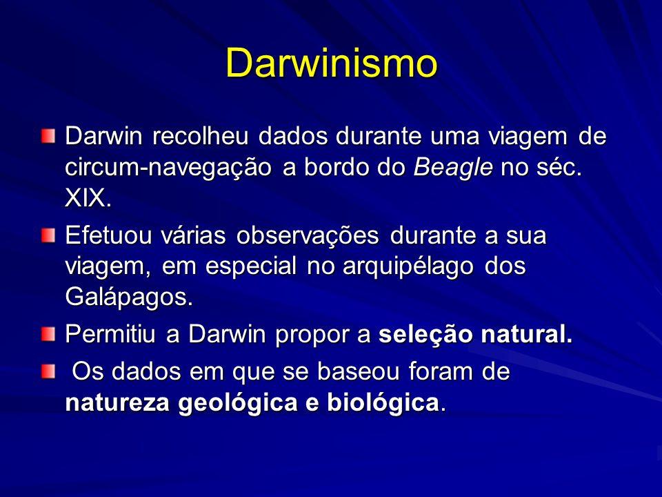 Darwinismo Darwin recolheu dados durante uma viagem de circum-navegação a bordo do Beagle no séc. XIX. Efetuou várias observações durante a sua viagem