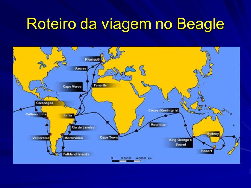 Roteiro da viagem no Beagle