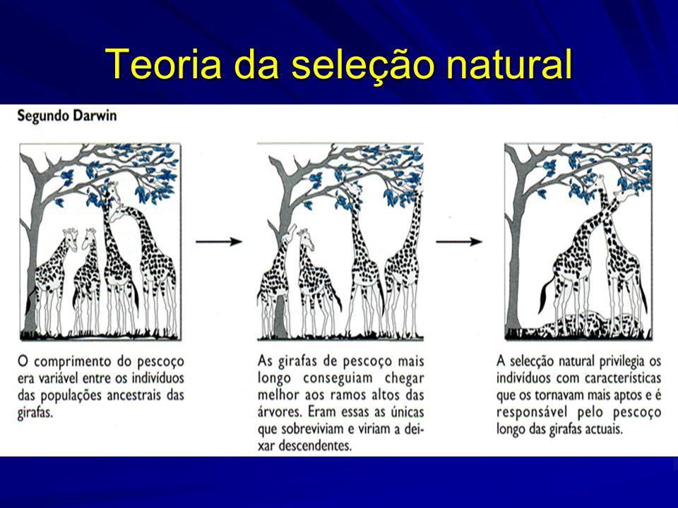 Teoria da seleção natural