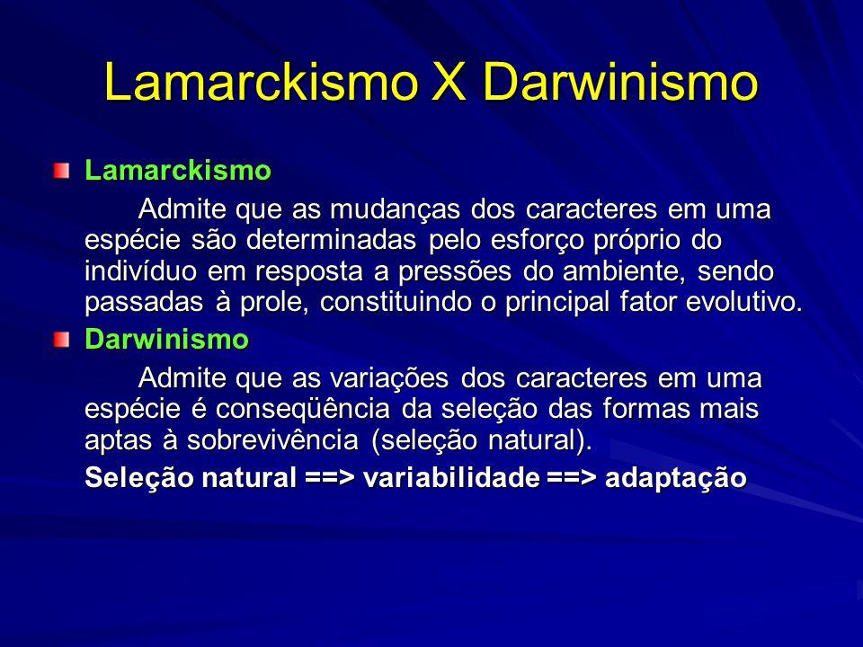 Lamarckismo X Darwinismo Lamarckismo Admite que as mudanças dos caracteres em uma espécie são determinadas pelo esforço próprio do indivíduo em respos