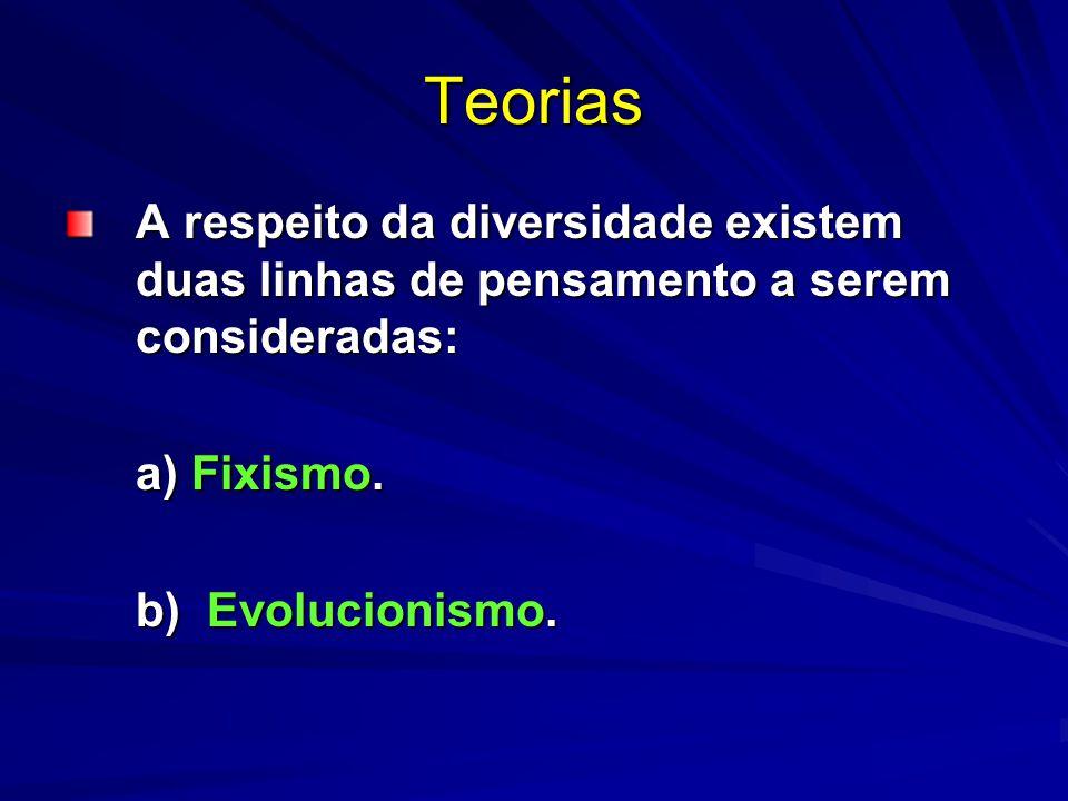 Teorias A respeito da diversidade existem duas linhas de pensamento a serem consideradas: a) Fixismo. b) Evolucionismo.