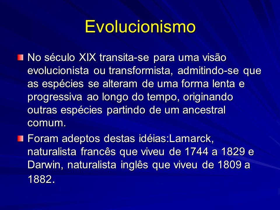 Evolucionismo No século XIX transita-se para uma visão evolucionista ou transformista, admitindo-se que as espécies se alteram de uma forma lenta e pr