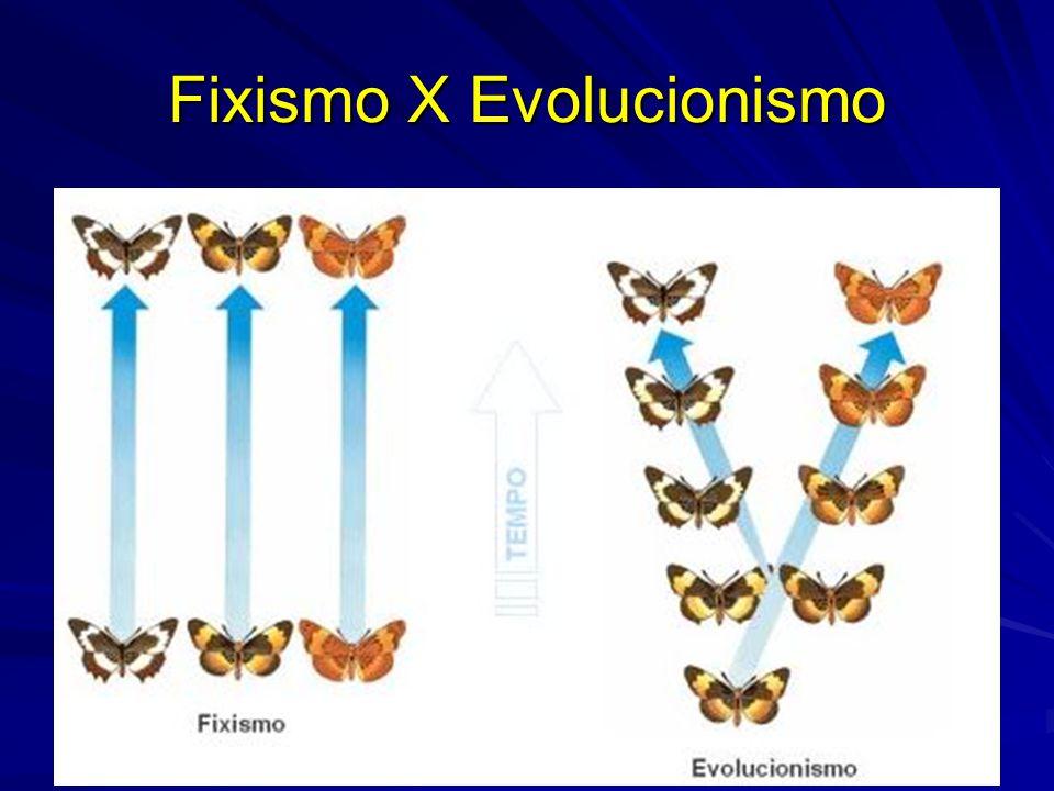 Lamarckismo X Darwinismo Lamarckismo Admite que as mudanças dos caracteres em uma espécie são determinadas pelo esforço próprio do indivíduo em resposta a pressões do ambiente, sendo passadas à prole, constituindo o principal fator evolutivo.