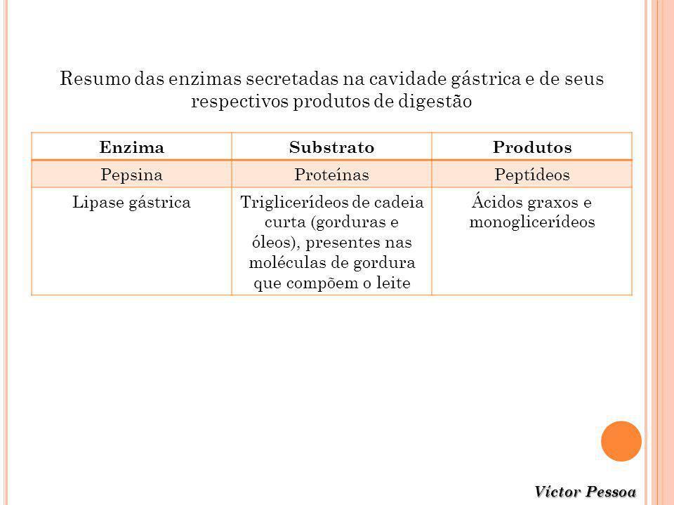 Resumo das enzimas secretadas na cavidade gástrica e de seus respectivos produtos de digestão EnzimaSubstratoProdutos PepsinaProteínasPeptídeos Lipase