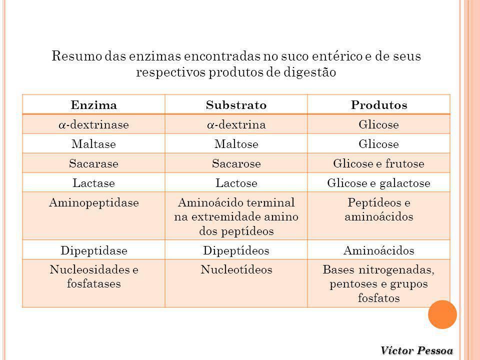 Resumo das enzimas encontradas no suco entérico e de seus respectivos produtos de digestão EnzimaSubstratoProdutos -dextrinase -dextrina Glicose Malta