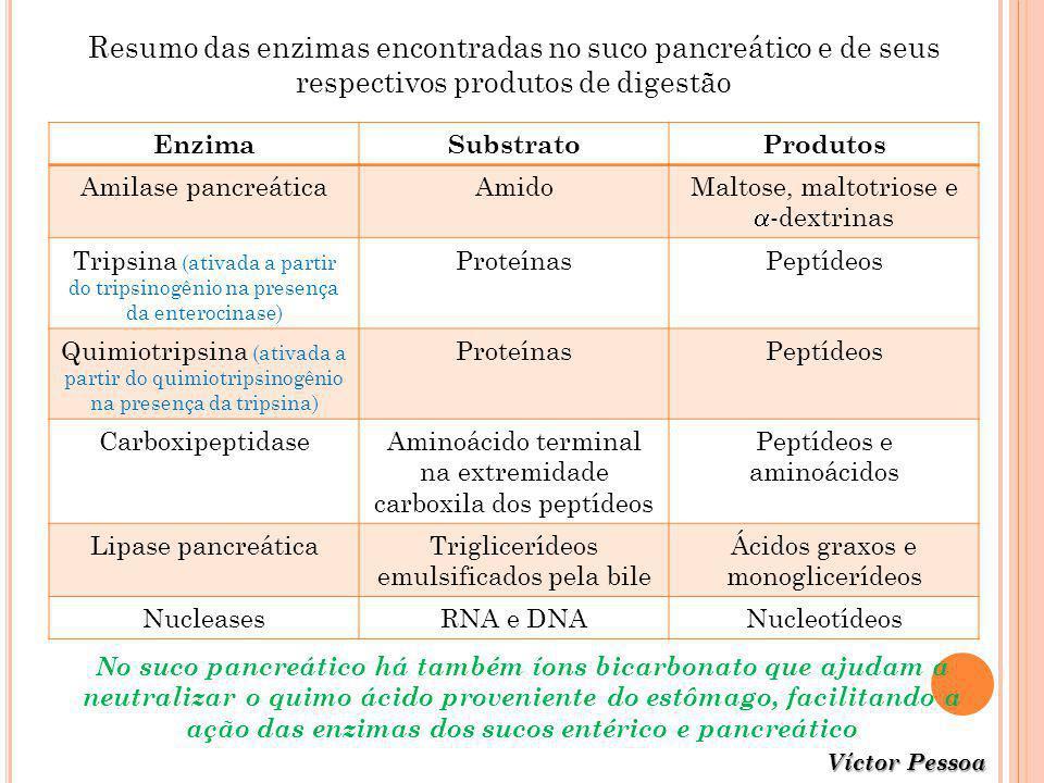 Víctor Pessoa Resumo das enzimas encontradas no suco pancreático e de seus respectivos produtos de digestão EnzimaSubstratoProdutos Amilase pancreátic