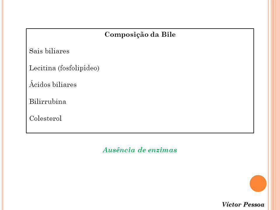 Composição da Bile Sais biliares Lecitina (fosfolipídeo) Ácidos biliares Bilirrubina Colesterol Ausência de enzimas