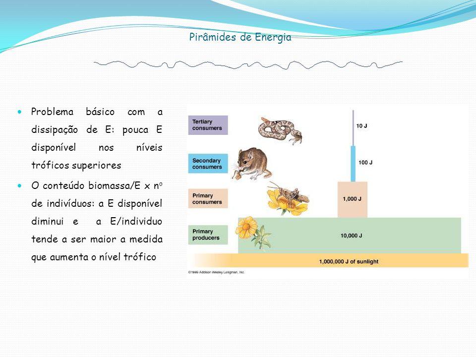 Problema básico com a dissipação de E: pouca E disponível nos níveis tróficos superiores O conteúdo biomassa/E x n o de indivíduos: a E disponível diminui e a E/individuo tende a ser maior a medida que aumenta o nível trófico Pirâmides de Energia