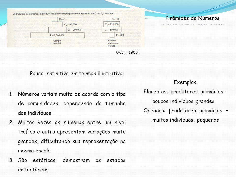 1.Números variam muito de acordo com o tipo de comunidades, dependendo do tamanho dos indivíduos 2.Muitas vezes os números entre um nível trófico e outro apresentam variações muito grandes, dificultando sua representação na mesma escala 3.São estáticas: demostram os estados instantâneos Pirâmides de Números Odum, 1983) Pouco instrutiva em termos ilustrativo: Exemplos: Florestas: produtores primários - poucos indivíduos grandes Oceanos: produtores primários – muitos indivíduos, pequenos