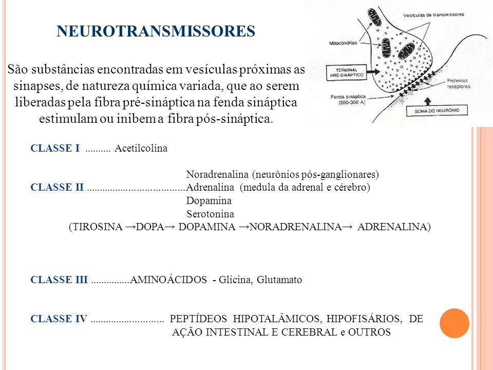 29 NEUROTRANSMISSORES São substâncias encontradas em vesículas próximas as sinapses, de natureza química variada, que ao serem liberadas pela fibra pré-sináptica na fenda sináptica estimulam ou inibem a fibra pós-sináptica.