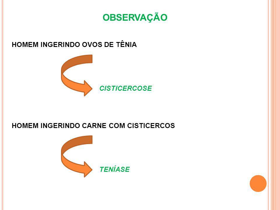 OBSERVAÇÃO HOMEM INGERINDO OVOS DE TÊNIA HOMEM INGERINDO CARNE COM CISTICERCOS CISTICERCOSE TENÍASE