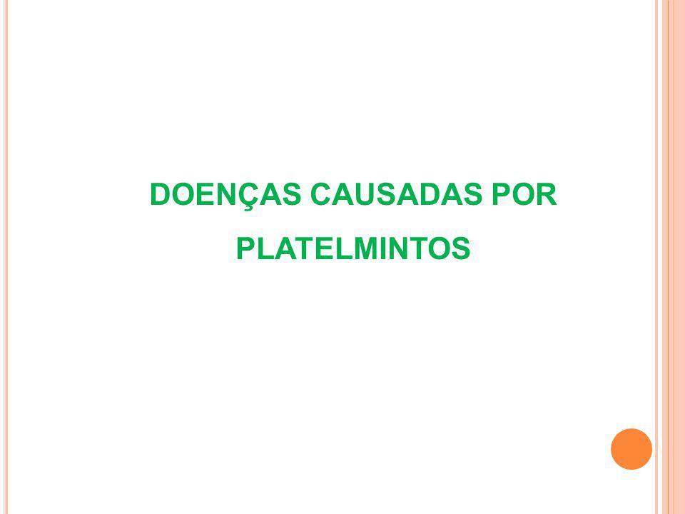 Ascaridíase (Ascaris lumbricoides) 1 2 3 4 5 Presença de apenas um hospedeiro (Ciclo monogenético ou monoxênico) Vermes adultos no intestino