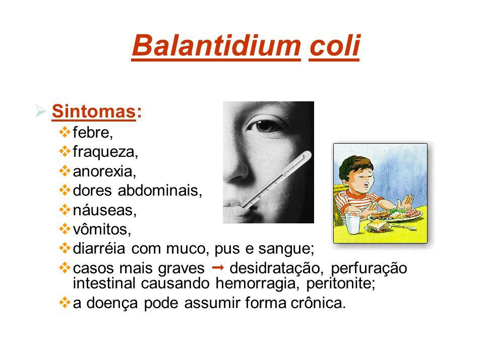 Balantidium coli Sintomas: febre, fraqueza, anorexia, dores abdominais, náuseas, vômitos, diarréia com muco, pus e sangue; casos mais graves desidrata