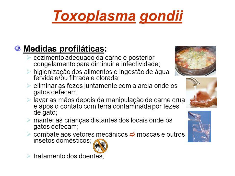 Toxoplasma gondii Medidas profiláticas: cozimento adequado da carne e posterior congelamento para diminuir a infectividade; higienização dos alimentos
