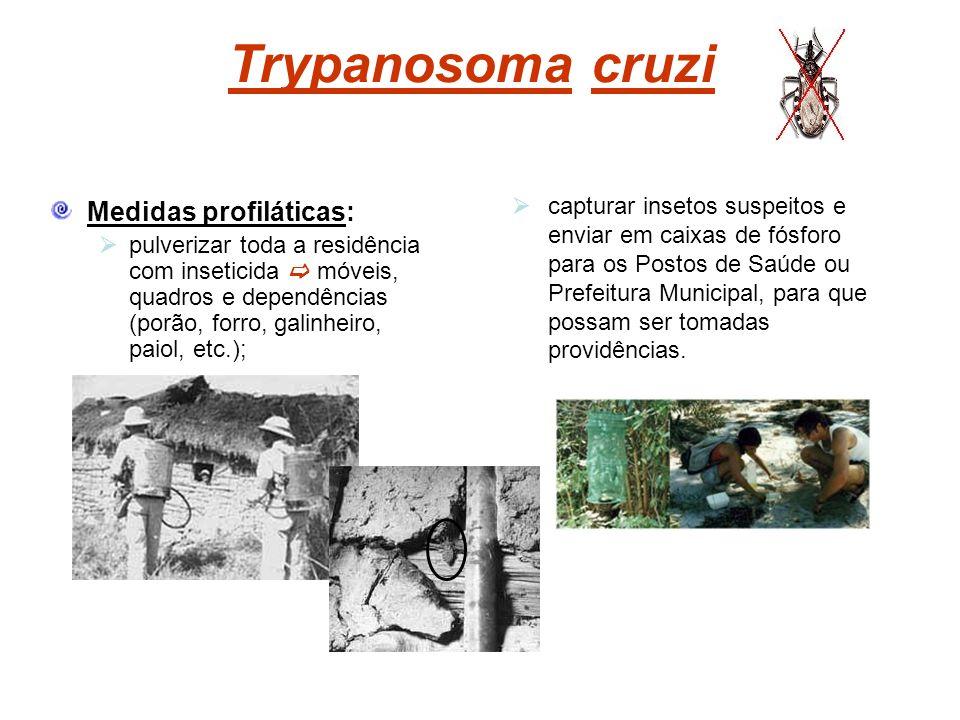 Trypanosoma cruzi Medidas profiláticas: pulverizar toda a residência com inseticida móveis, quadros e dependências (porão, forro, galinheiro, paiol, e