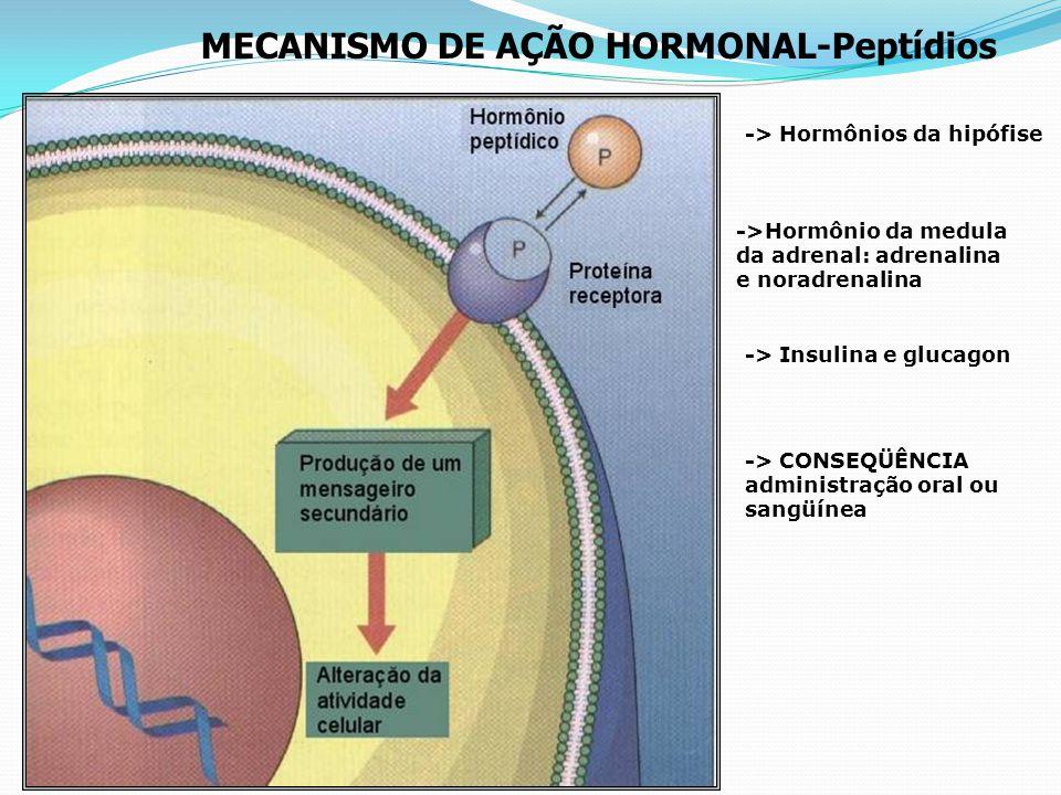 MECANISMO DE AÇÃO HORMONAL- Esteróides * Especificidade das células-alvo ->Hormônios do córtex da adrenal (cortisol e aldosterna ->Hormônio da tireóid