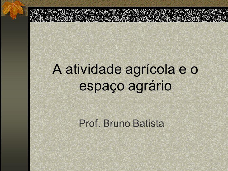 A atividade agrícola e o espaço agrário Prof. Bruno Batista