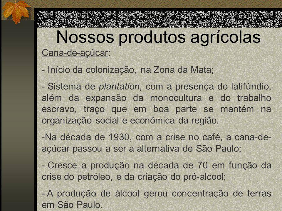 Nossos produtos agrícolas Cana-de-açúcar: - Início da colonização, na Zona da Mata; - Sistema de plantation, com a presença do latifúndio, além da exp