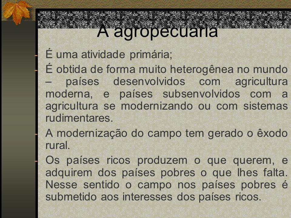 A agropecuária - Neste sentido, o campo nos países pobres nem sempre atende as demandas alimentares da população.