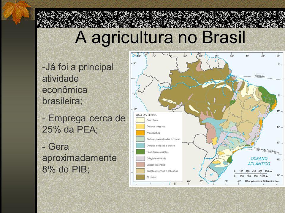 A agricultura no Brasil -Já foi a principal atividade econômica brasileira; - Emprega cerca de 25% da PEA; - Gera aproximadamente 8% do PIB;