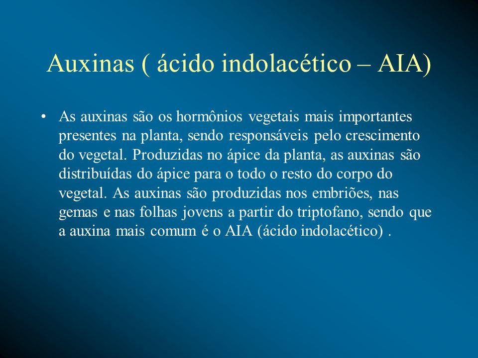 Auxinas ( ácido indolacético – AIA) As auxinas são os hormônios vegetais mais importantes presentes na planta, sendo responsáveis pelo crescimento do vegetal.