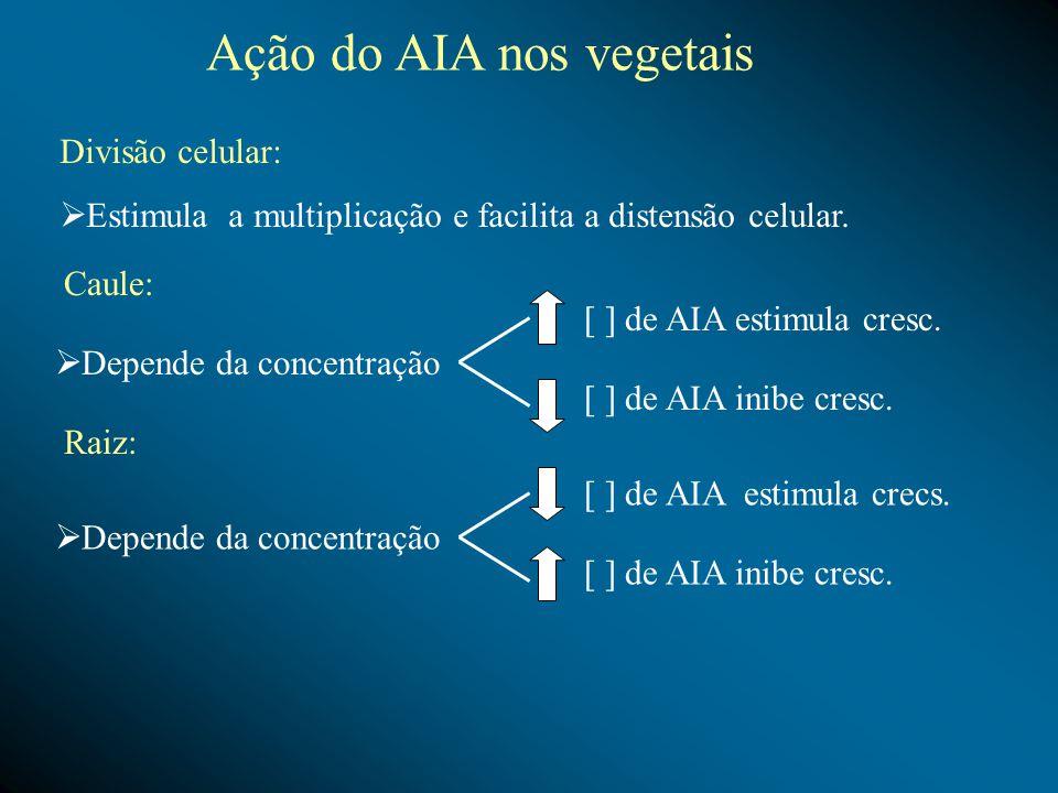 Depende da concentração [ ] de AIA estimula cresc. [ ] de AIA inibe cresc. Depende da concentração [ ] de AIA estimula crecs. [ ] de AIA inibe cresc.