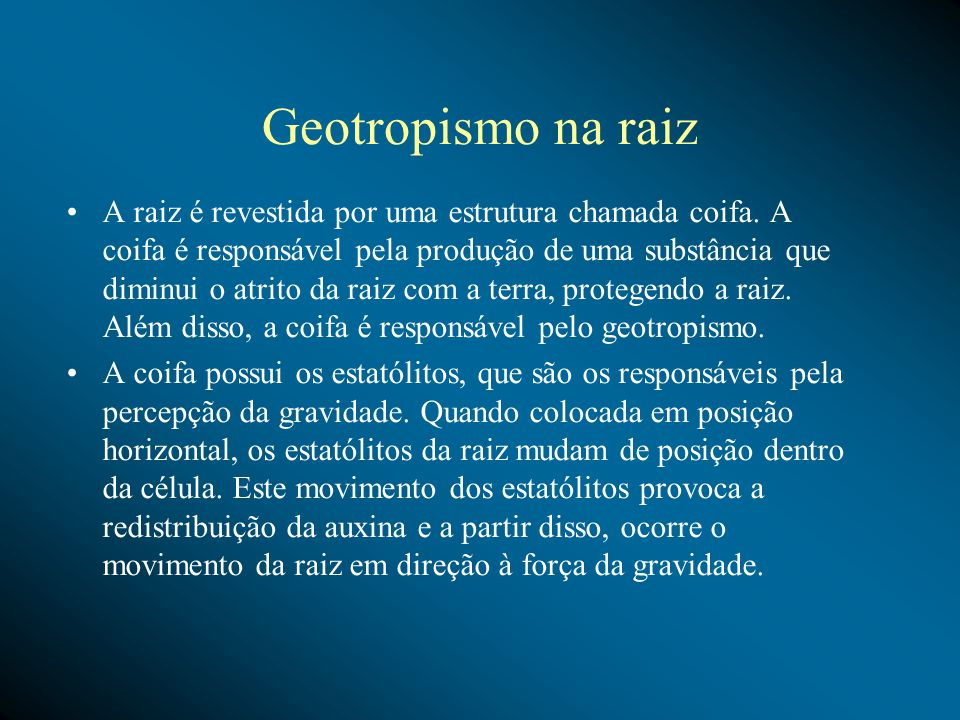 Geotropismo na raiz A raiz é revestida por uma estrutura chamada coifa.