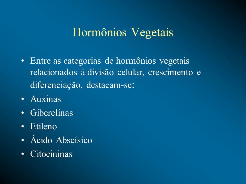 Hormônios Vegetais Entre as categorias de hormônios vegetais relacionados à divisão celular, crescimento e diferenciação, destacam-se : Auxinas Giberelinas Etileno Ácido Abscísico Citocininas