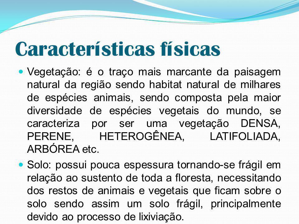 Amazônia brasileira A Amazônia propriamente dita estende-se por oito países do norte da América do Sul.