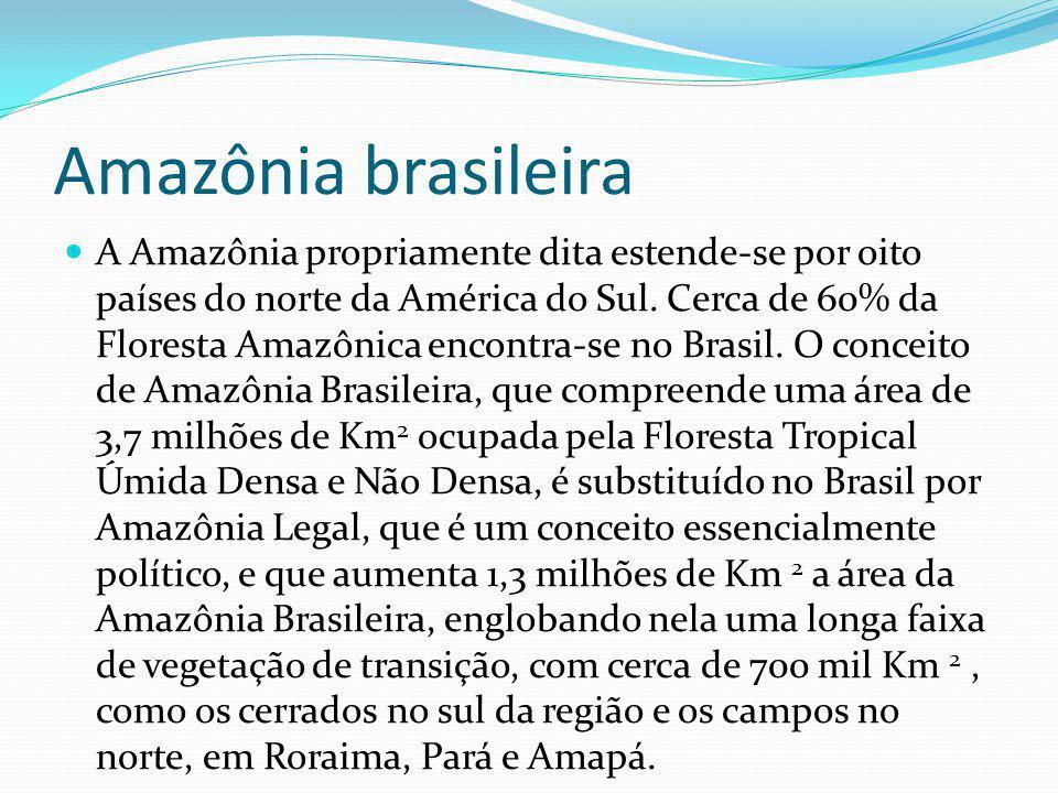 Amazônia legal A chamada Amazônia Legal brasileira abrange os Estados do Amazonas, Amapá, Acre, Mato Grosso, oeste do Maranhão, Pará, Rondônia, Roraima e Tocantins, com uma superfície de aproximadamente 5 milhões de Km 2, ou seja, 60% do território nacional.