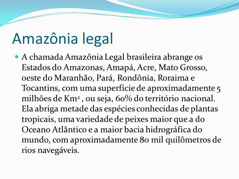Amazônia legal A chamada Amazônia Legal brasileira abrange os Estados do Amazonas, Amapá, Acre, Mato Grosso, oeste do Maranhão, Pará, Rondônia, Roraim