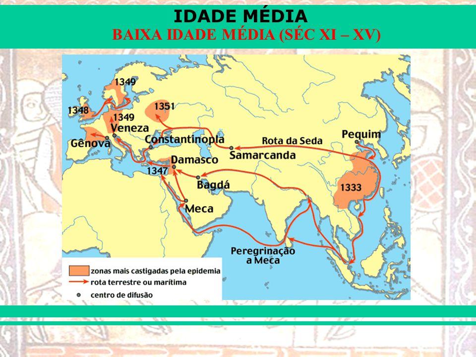 IDADE MÉDIA BAIXA IDADE MÉDIA (SÉC XI – XV)