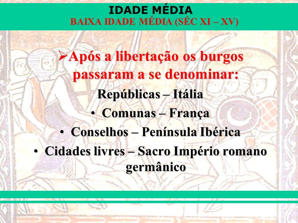 IDADE MÉDIA BAIXA IDADE MÉDIA (SÉC XI – XV) Após a libertação os burgos passaram a se denominar: Após a libertação os burgos passaram a se denominar: