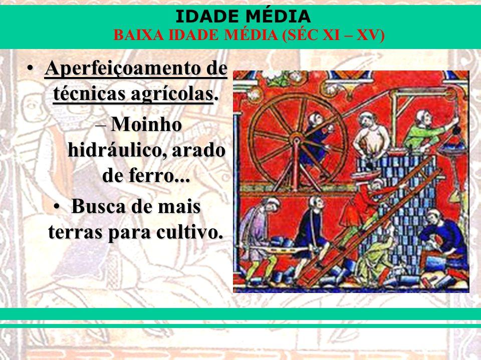 IDADE MÉDIA BAIXA IDADE MÉDIA (SÉC XI – XV) Aperfeiçoamento de técnicas agrícolas.Aperfeiçoamento de técnicas agrícolas.