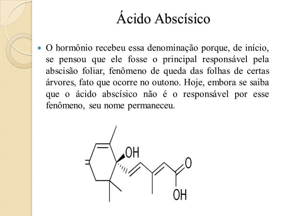 Ácido Abscísico O hormônio recebeu essa denominação porque, de início, se pensou que ele fosse o principal responsável pela abscisão foliar, fenômeno de queda das folhas de certas árvores, fato que ocorre no outono.