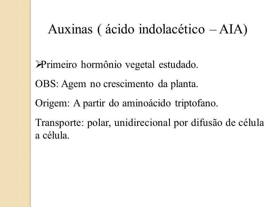 Primeiro hormônio vegetal estudado.OBS: Agem no crescimento da planta.